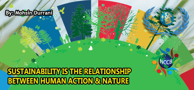SUSTAINABILITY IS THE RELATIONSHIP  BETWEEN HUMAN ACTION & NATURE